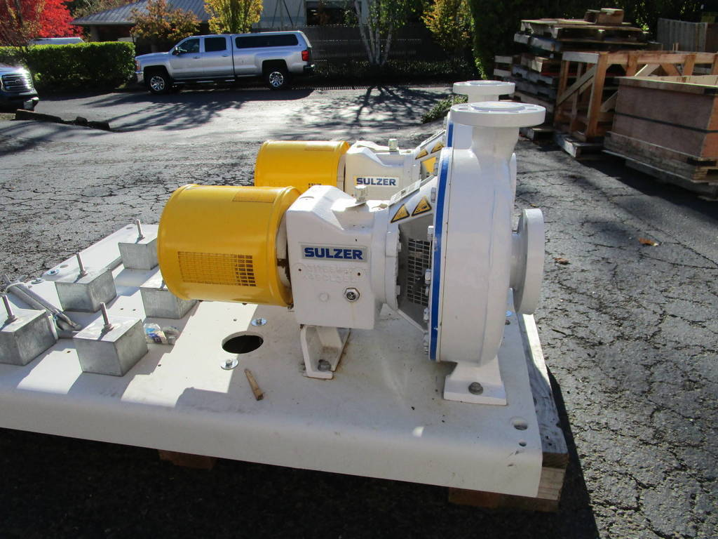 Sulzer/Ahlstrom CPT 24-2 Duplex Stainless A890 Pump | ATS