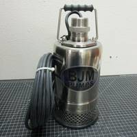Image of this particular BJM R Series R250-115 1/3 HP 115V Submersible Pump